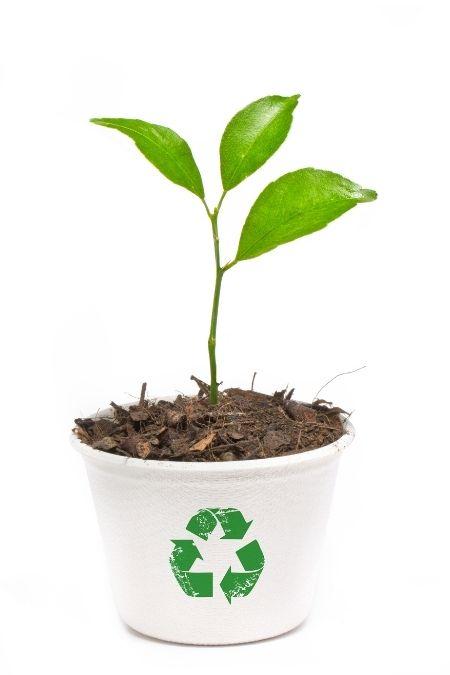 maceteros reciclados
